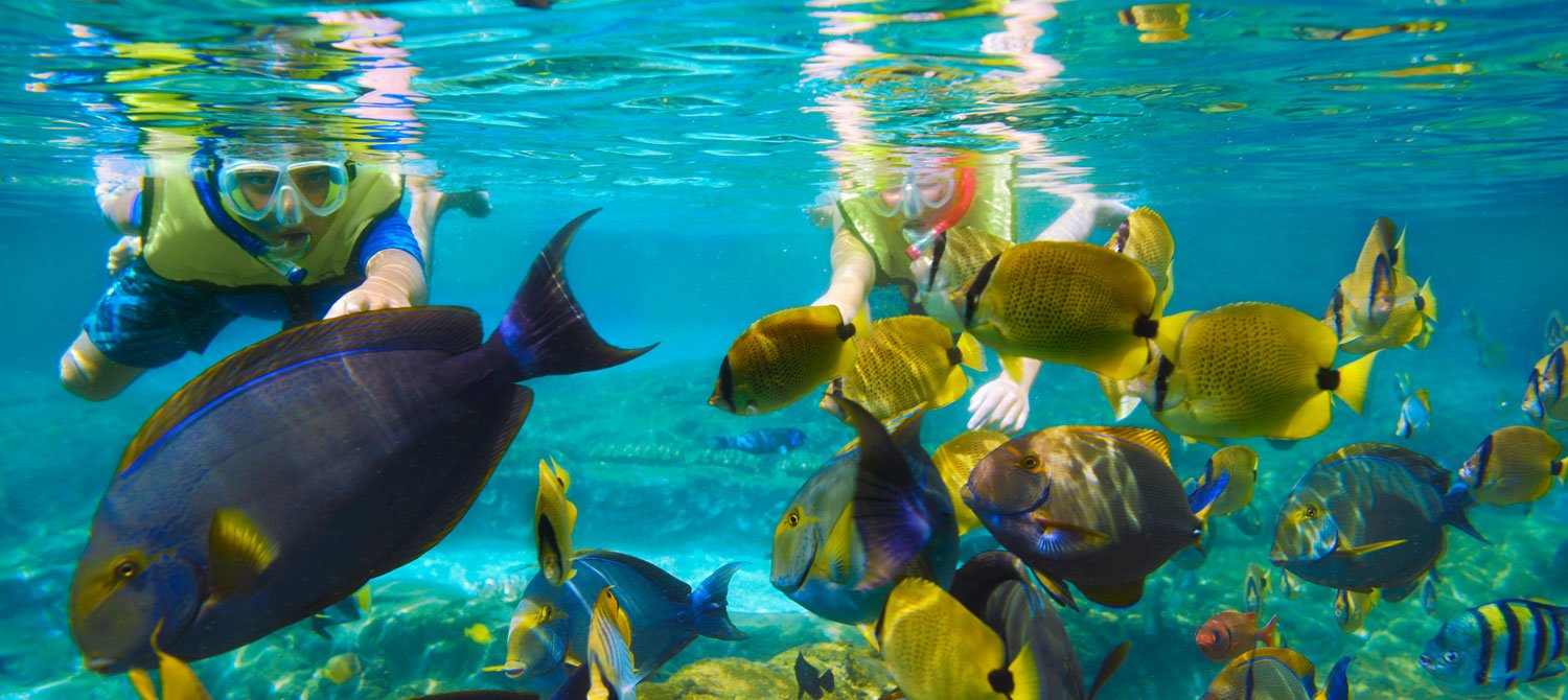 Snorkelling, fishing & island trip with barbecue - Tour