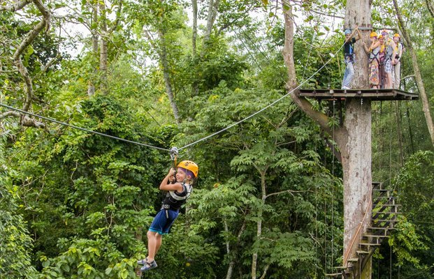 Bangkok/Pattaya Zipline Adventure – Flight of the Gibbon (Deposit Only) - Tour