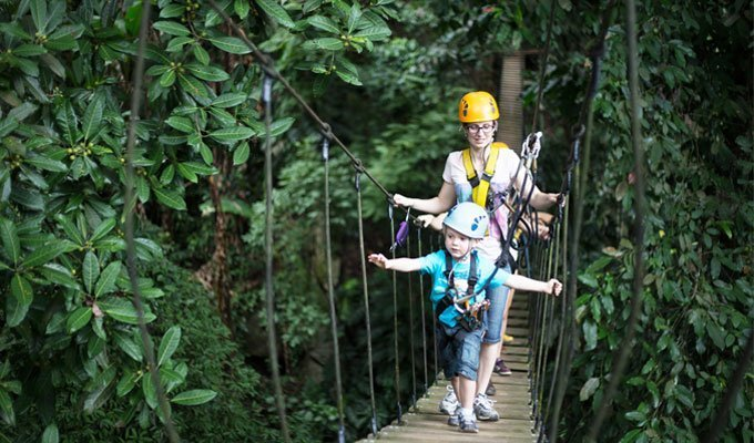Chiang Mai Zipline Adventure - Flight of the Gibbon (Deposit Only) - Tour
