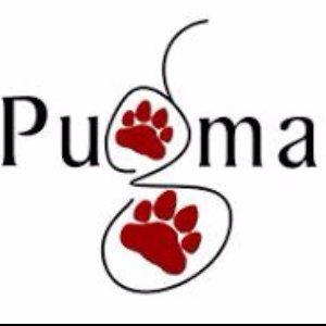 Pugmarks Holidays