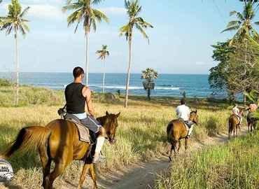 Horse Riding - Tour
