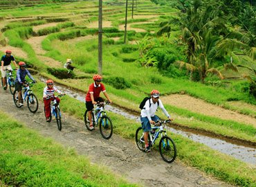 Green Bikes Bali (Deposit Only) - Tour