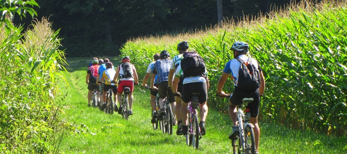 Cycling To Campsite - Tour
