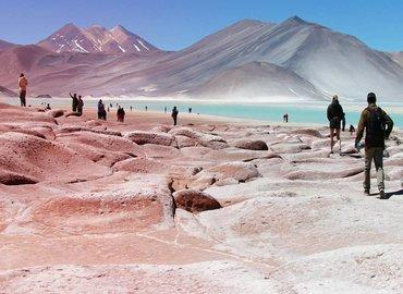 Lagunas Altiplánicas & Mirador de Piedras Rojas - Tour