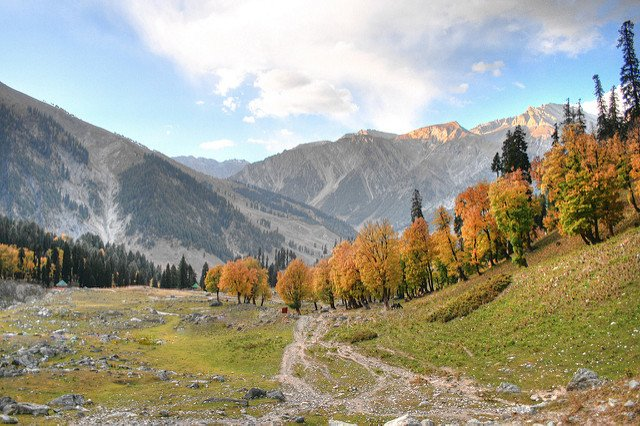 EXPLORE KASHMIR - Tour