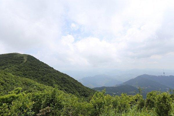 COMPLETE HONGKONG WITH SHENZHEN - Tour