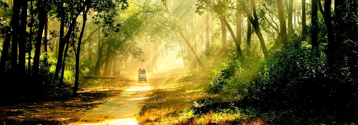 Rejuvenate your soul and Mind