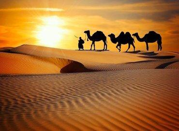 Classic Rajasthan - Tour