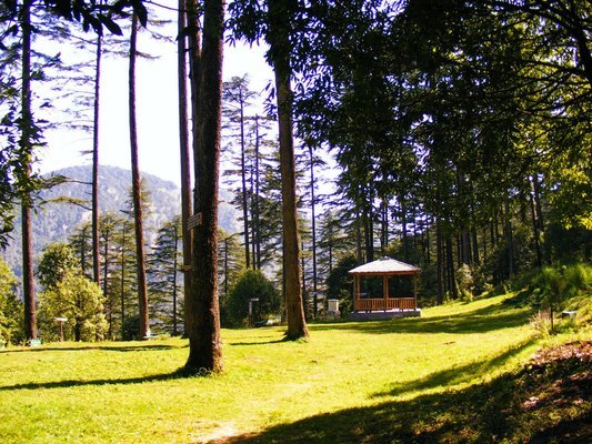 Dhanaulti - Weekend Getaway - Tour