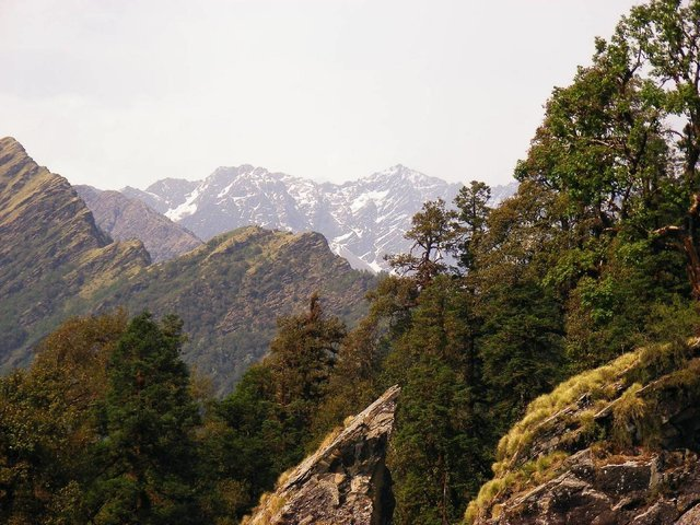 Chopta And Tunganath Tour - Collection