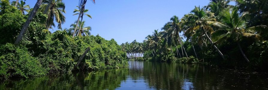 Kerala Honeymoon Packages from Hyderabad - Collection