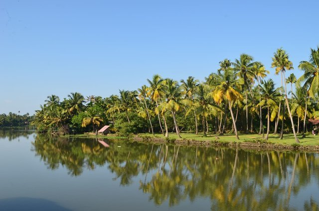 Kerala Honeymoon Packages from Delhi - Collection