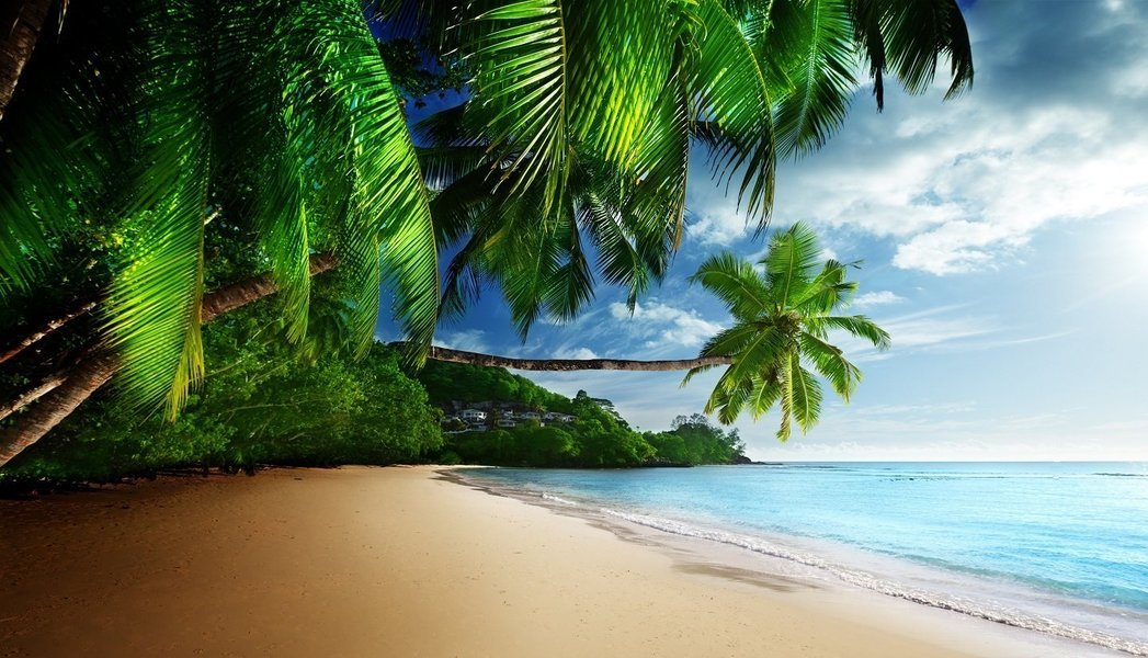 Andaman Dreams - Tour
