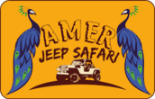 Amer Jeep Safari Logo