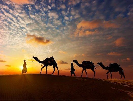 Honeymoon: Rajasthan - Tour