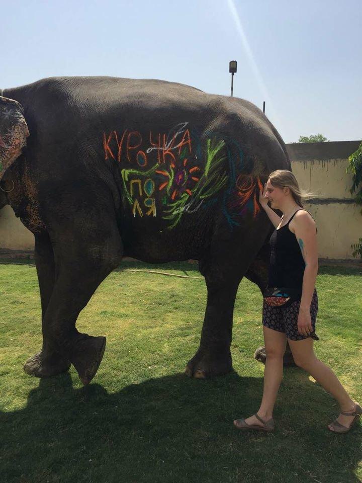 elephant experience farm