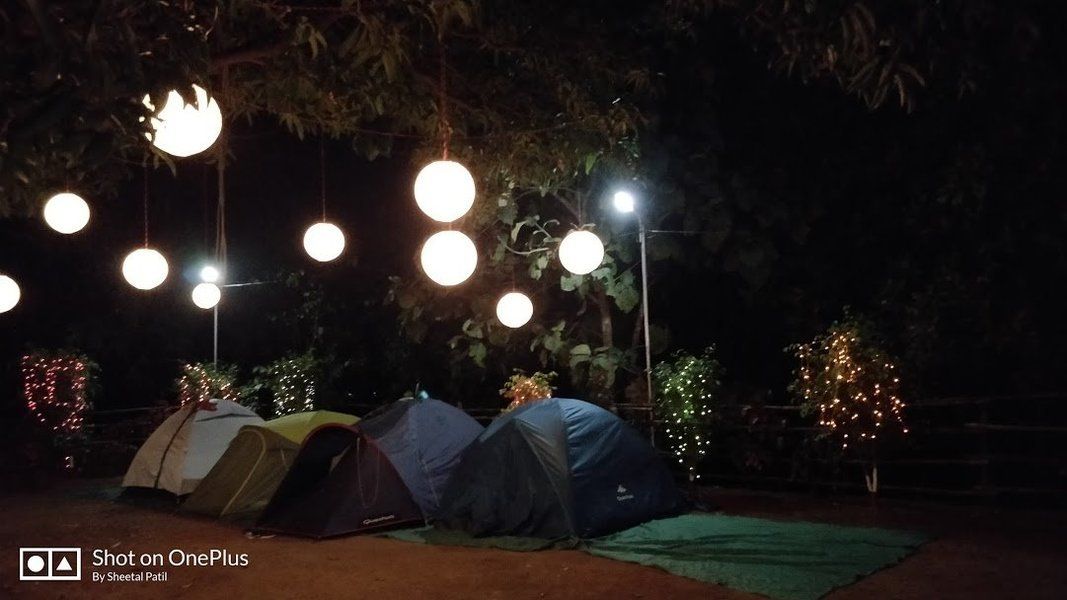 New Year Special Camping at Pali - Tour