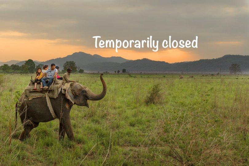 Elephant Safari - Tour