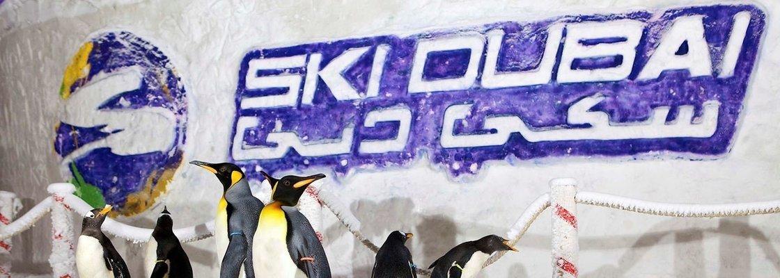Ski Dubai - Tour