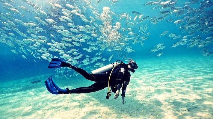 Fujairah Scuba Diving Experience from Dubai - Tour