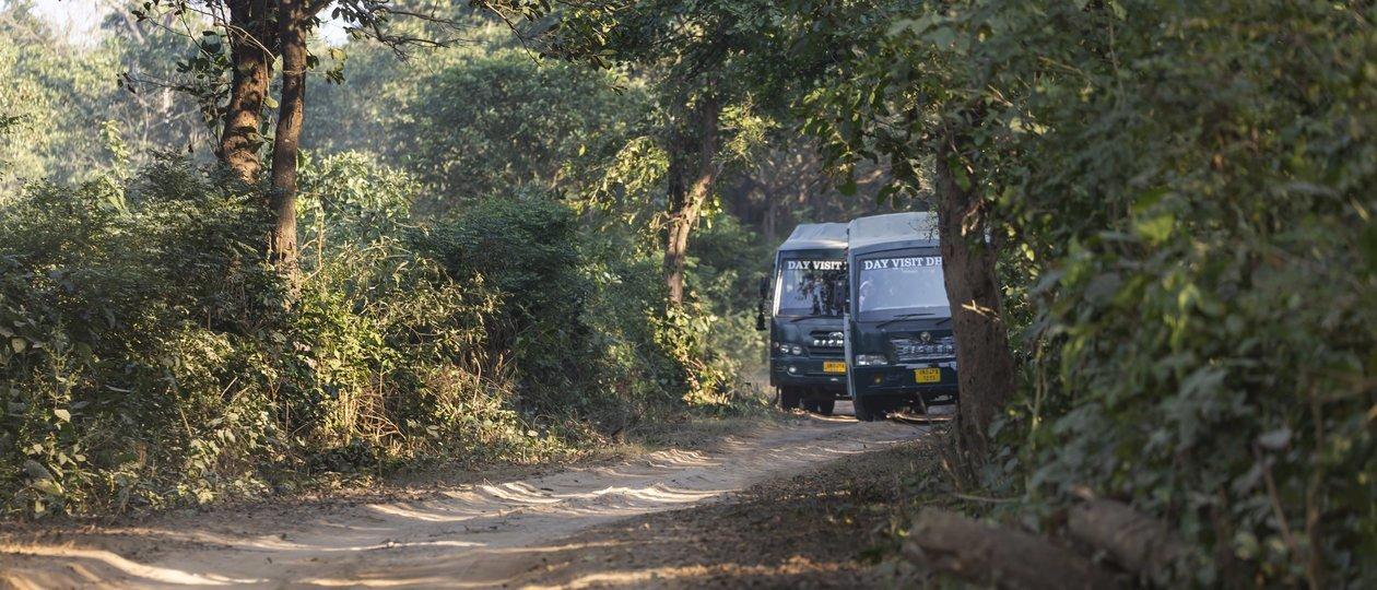 Canter Safari - Tour