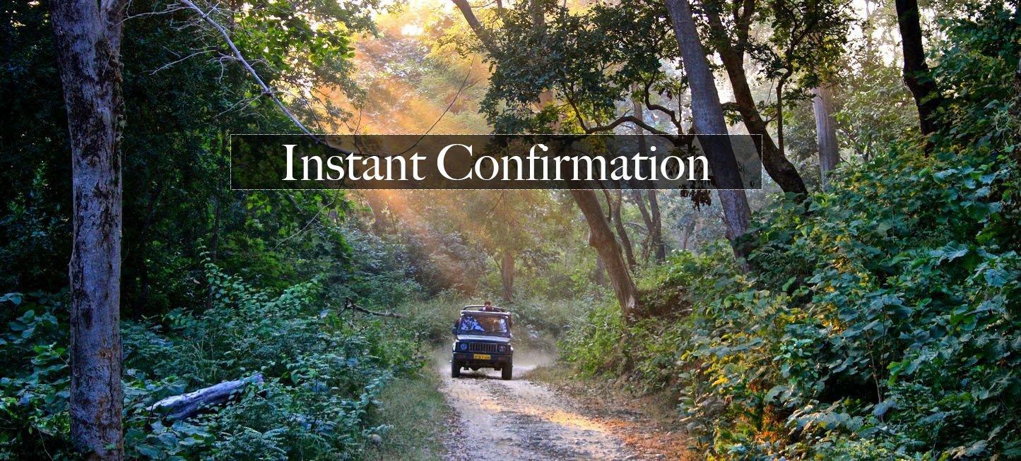 Jungle Safari - 45 days in Advance - Collection