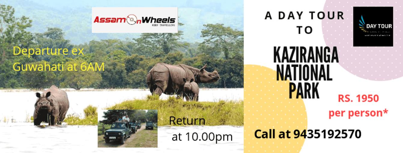 Guwahati to Kaziranga National Park Wildlife Seat-in-Coach Day Tour - Tour