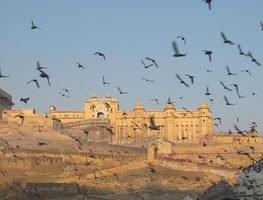 Jaipur-exotic-india