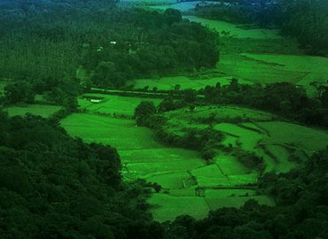 Explore Coorg - 3 Days - Tour