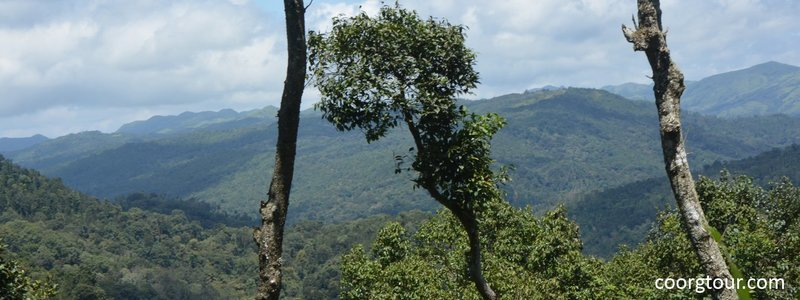 Coorg Coach Tour - Collection