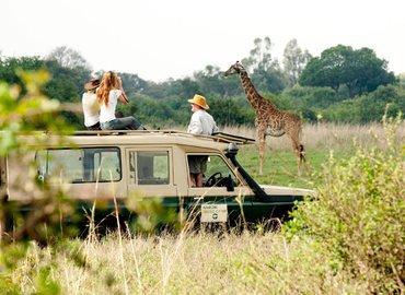 Best of Kenya Safari - (7 Days/ 6 Nights) - Tour
