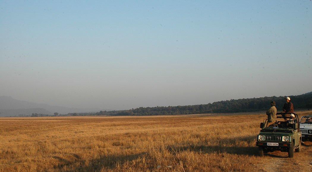 Corbett Tiger Reserve: Bijrani Range and Camp - Tour