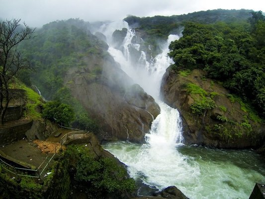 Dudhsagar Waterfalls Trek - Tour