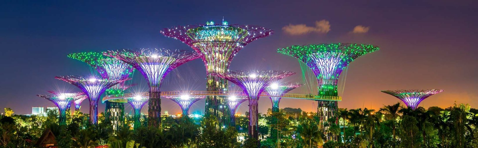 Gardens by the Bay, Sightseeing in Singapore - Tour