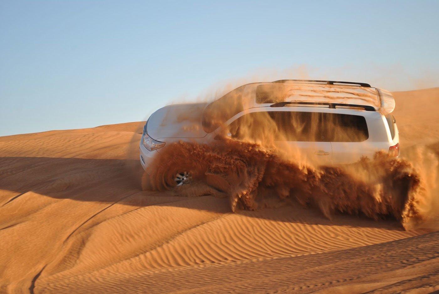 Desert Safari with Dinner & Live Entertainments - Tour