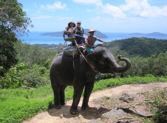 Safari B (Elephant Trek + Monkey Show +Thai Cooking Show+Thai Boxing +Buffalo Photo), Phuket - Tour
