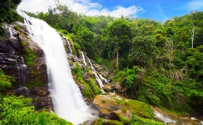 Doi Inthanon Tour with Lunch, Sightseeing in Chiang Mai - Tour