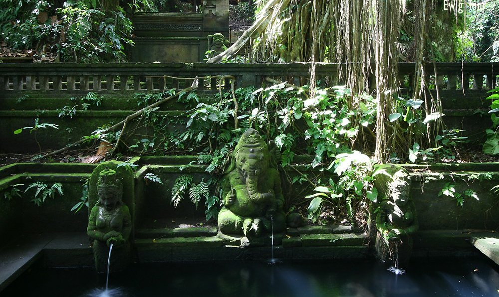 Mengwi Royal Temple, Alas Kedaton and Tanah Lot Sunset Tour, Sightseeing in Bali - Tour