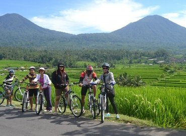 Elephant Ride and Cycling with Lunch, Sightseeing in Bali - Tour