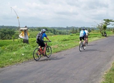 Ubud By Cycling Tour with Authentic Balinese Lunch, Sightseeing in Bali - Tour
