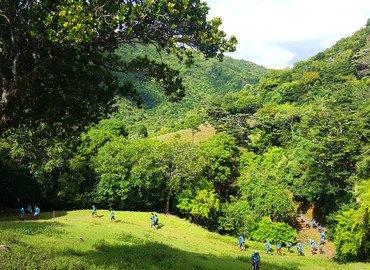 Ile Aux Aigrettes Island Tour, Sightseeing in Mauritius - Tour