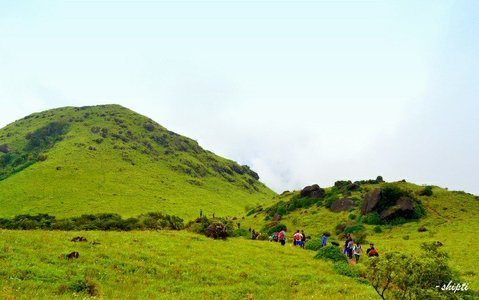 Trek to Tadiyandamol, Coorg