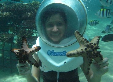 Sea Walker Tour with Lunch Tickets in Bali - Tour