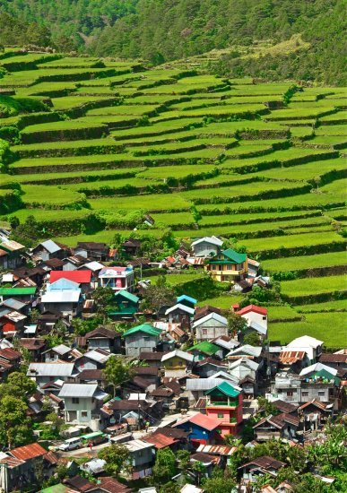 Banaue Rice Terraces, Sightseeing in Manila - Tour