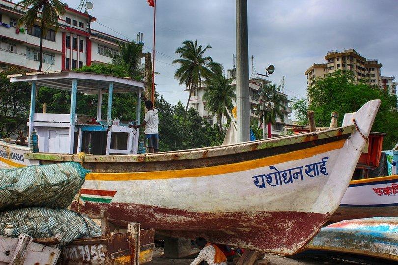 Mumbai Full-Day Shore Excursion - Tour