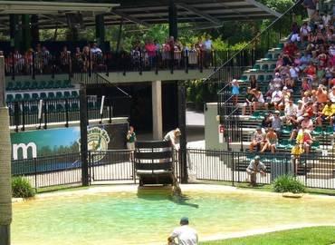 Australia Zoo Tour, Sightseeing in Gold Coast - Tour