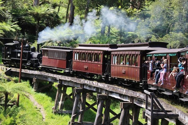 Puffing Billy Train Ride with Wine Country Tour, Sightseeing in Melbourne - Tour