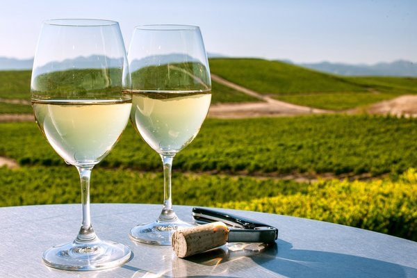 Yarra Valley Wineries Tour, Sightseeing in Melbourne - Tour
