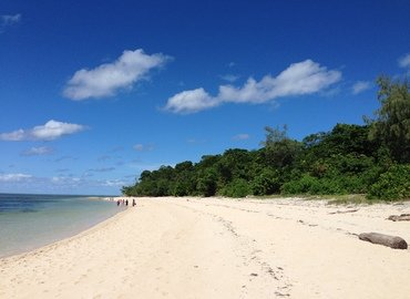 Great Adventures Cruise Tour, Sightseeing in Cairns - Tour