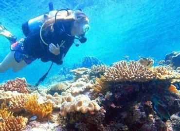 Reef Magic Cruise Tour, Sightseeing in Cairns - Tour
